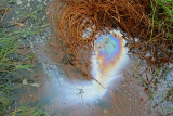 Film of oil on the surface of water - image the formation of a new galaxy in outer space
