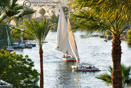 River Nile at Aswan 4, Egypt
