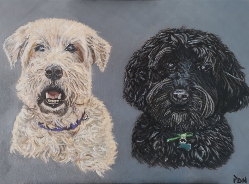 Brodie & Dylan - SOLD
