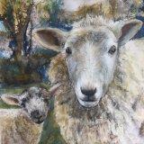 Soberton Sheep