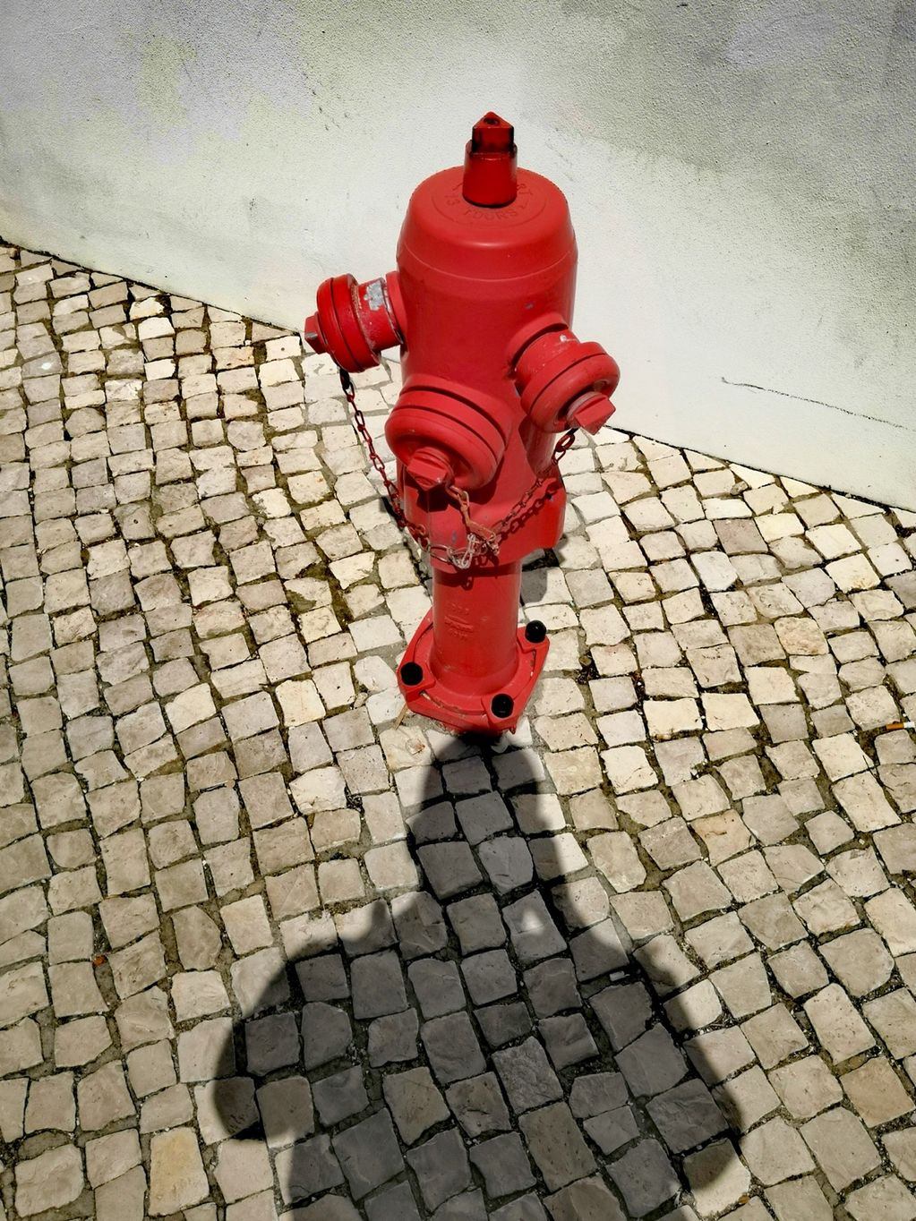 Self Portrait With Red Hydrant (Cascais) 2019