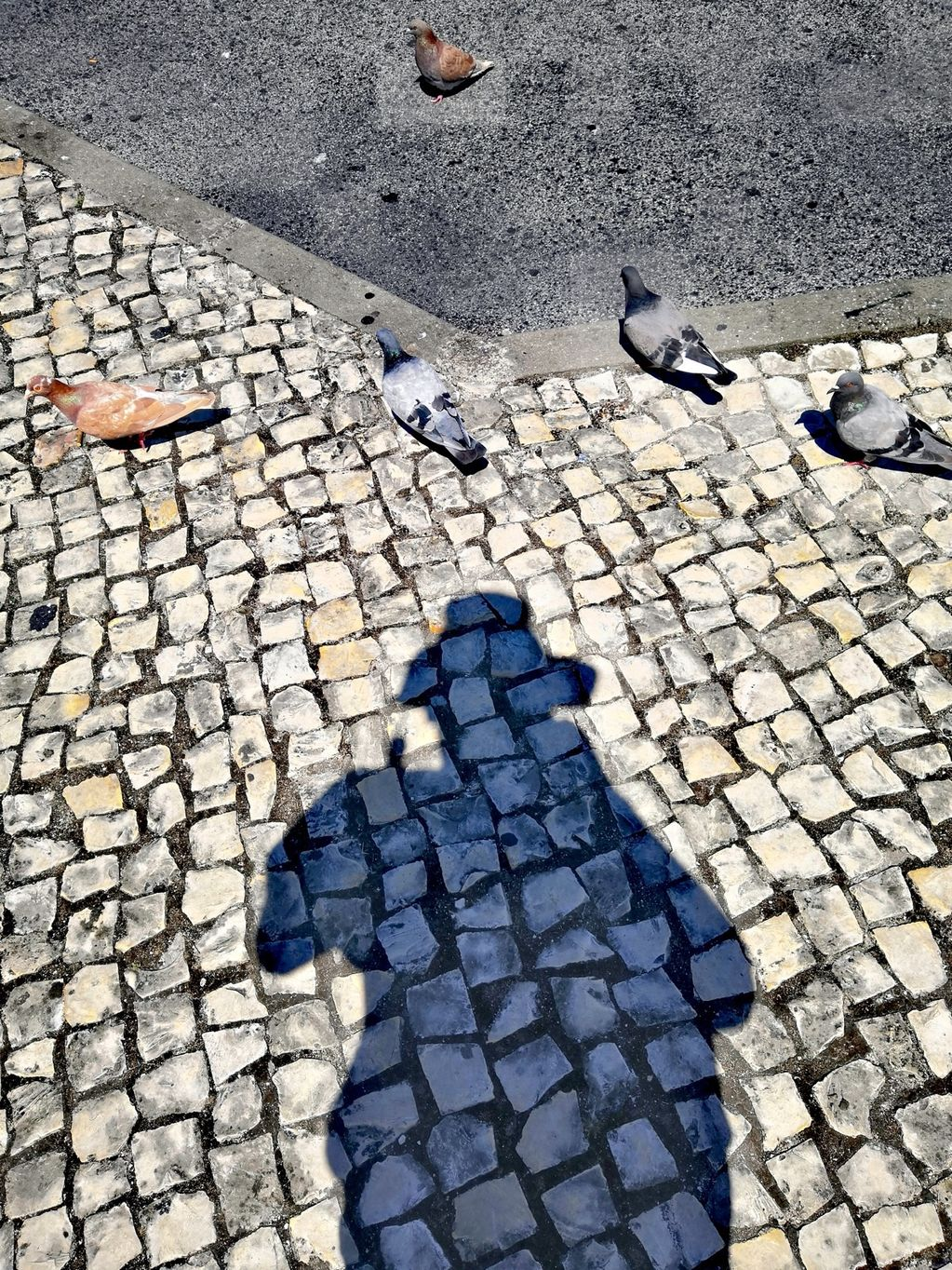 Self Portrait As If I'm In That Film With All The Birds (Sintra) 2019