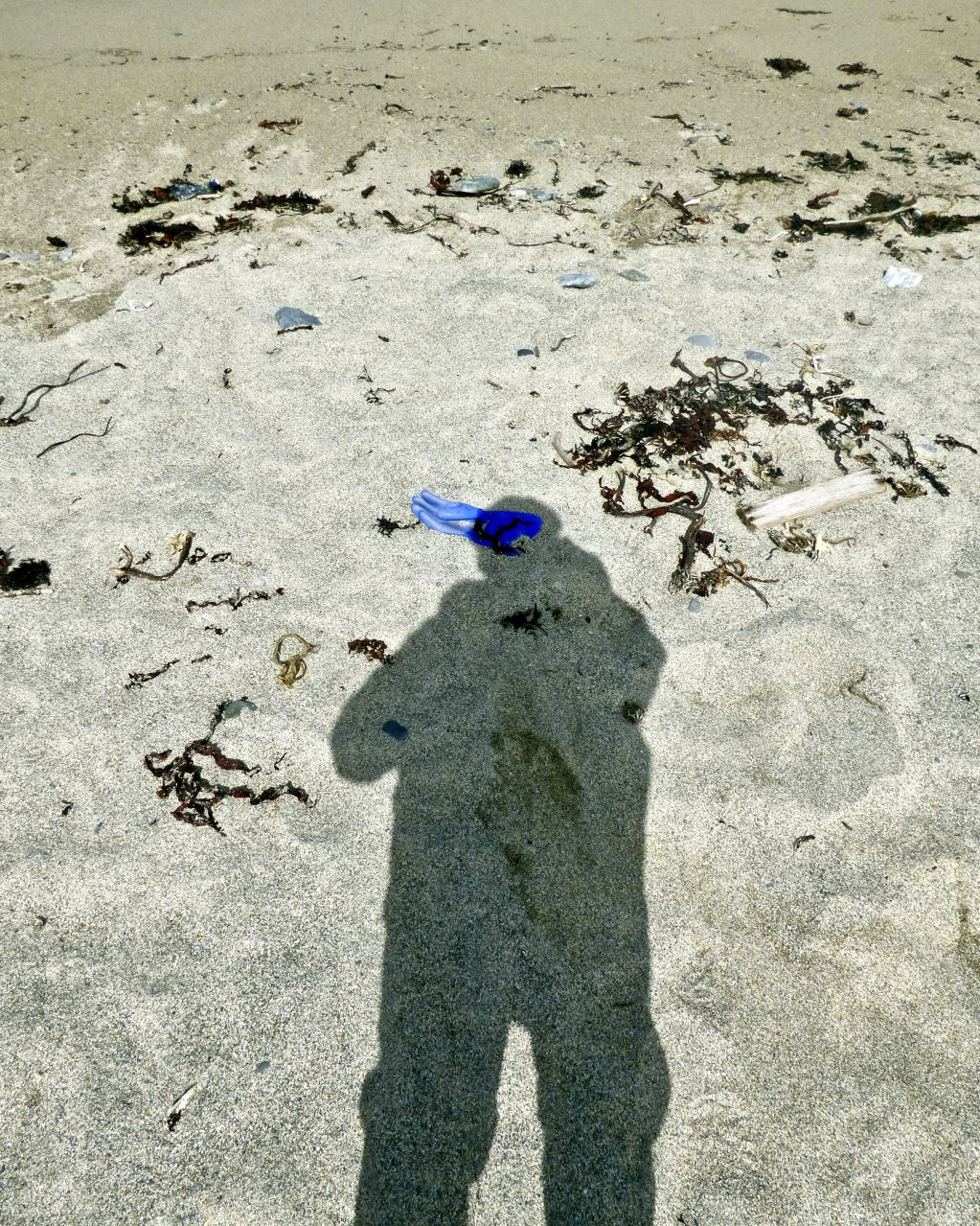 Self Portrait, Rubber Glove, Bardsey Island 2018