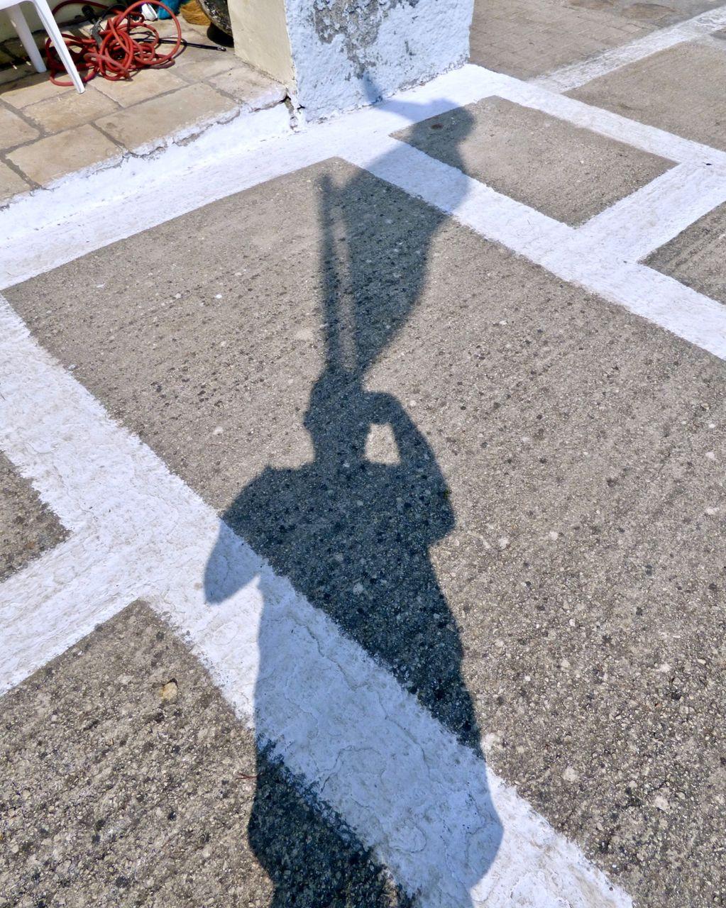 Self Portrait as Flagpole 2018