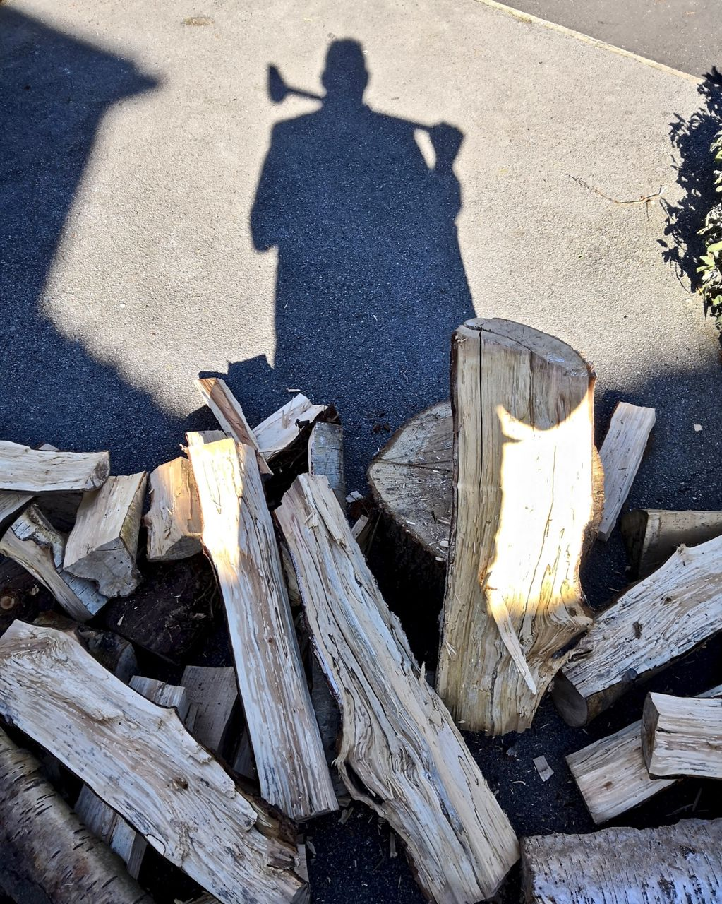 Self Portrait with Wood 2018