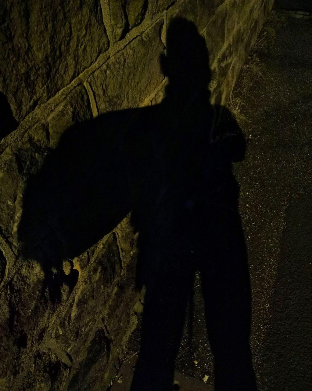 Self Portrait Down a Dark Alley 2018