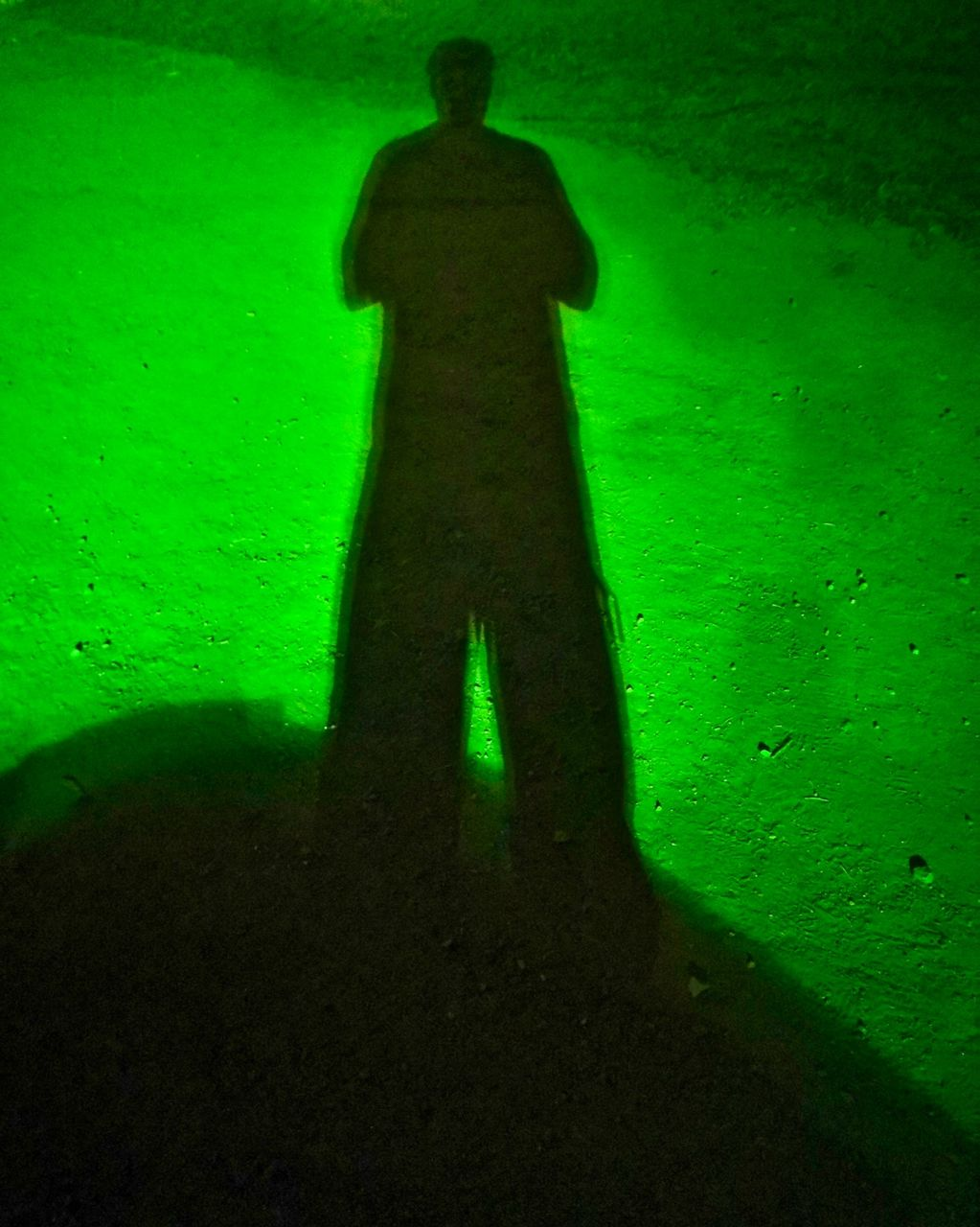 Self Portrait as if the Night was Green (Greenbelt Festival) 2019