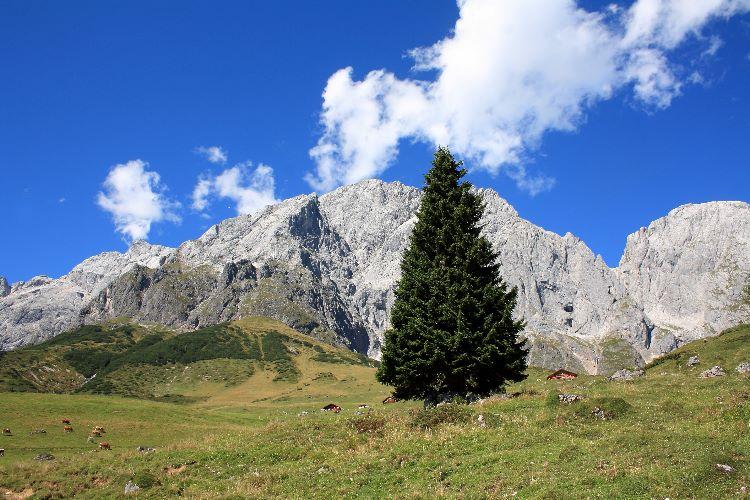 Muhlbach mountain range