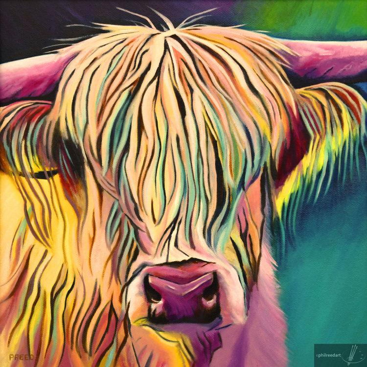Karen, Highland Cow