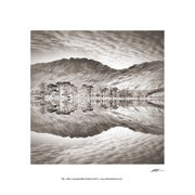 PP47 The Buttermere Pines