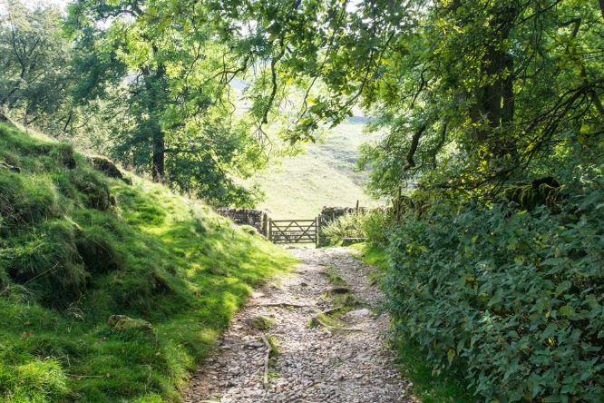 #1004 Gateway Yorkshire Dales