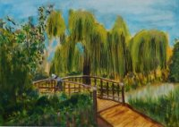 Footbridge at Midhurst Pond
