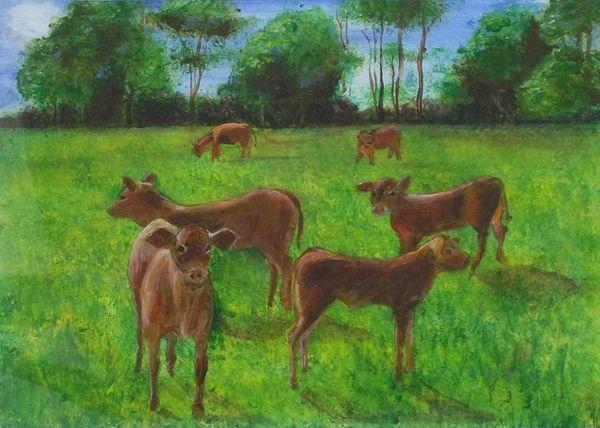 Calves by Alison Hooker