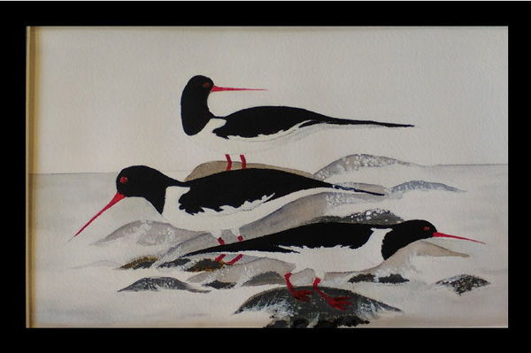 Wading Birds by Barbara Cleary