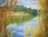 Murray River N.S.W.