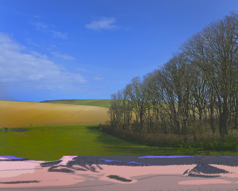Sussex Downs No4