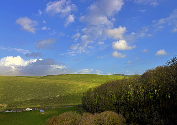 Sussex Downs No5