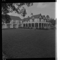 Buckatree house