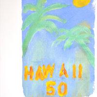 Hawaii 50 orange edited-2