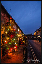 Castleton Christmas Trees 2