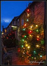Castleton Christmas Trees