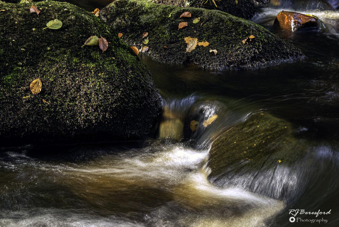 Padley Gorge Autumn