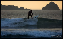Surf's Up!!