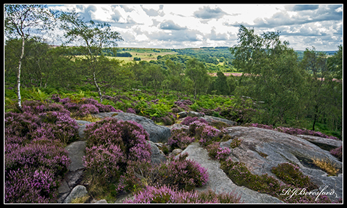 Surprise View to Longshaw