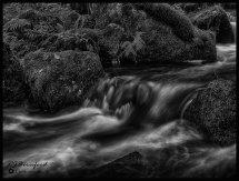 Wyming Brook 4
