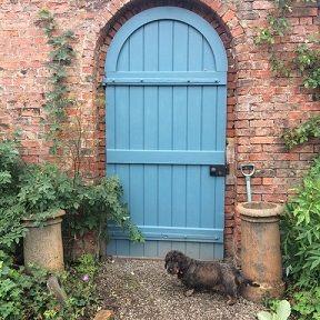Blue Door in the garden