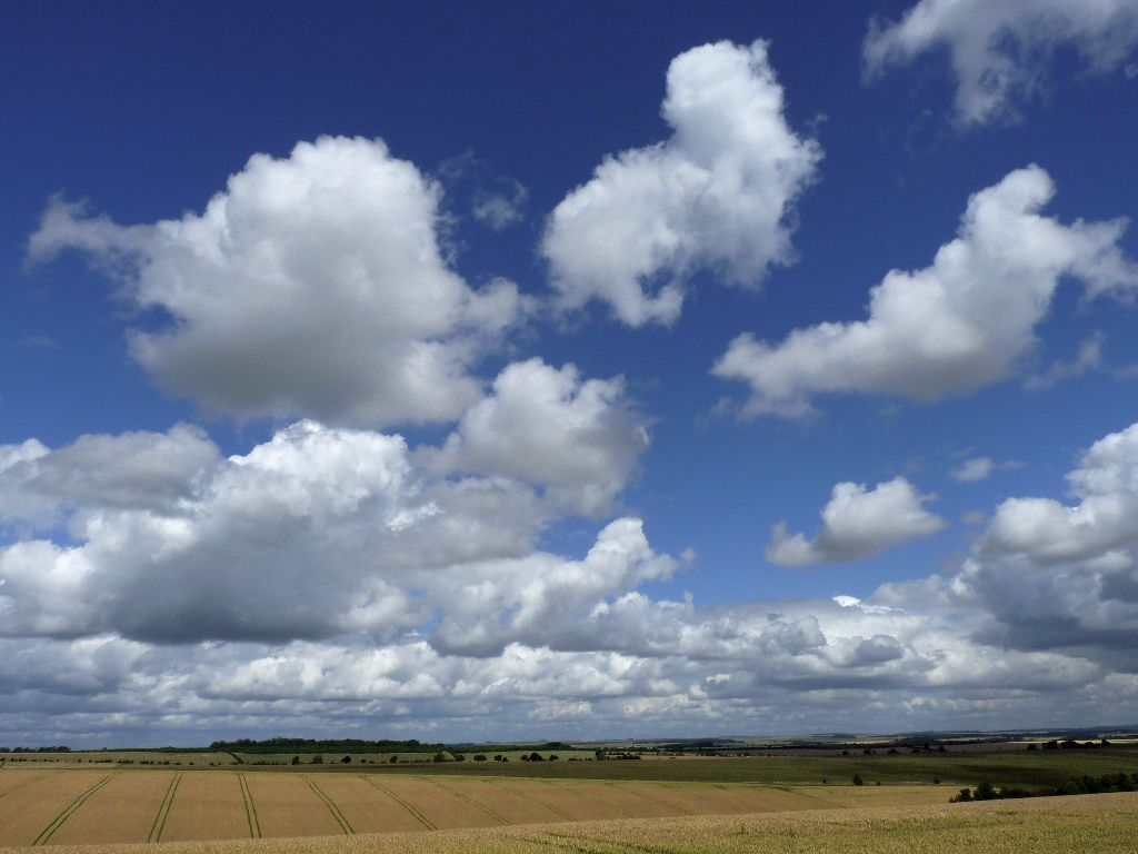Cumulus cloud over Wiltshire Downs