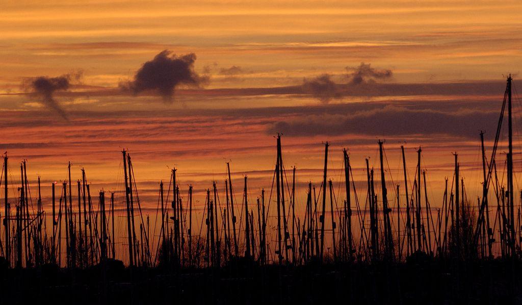 Sunset Masts