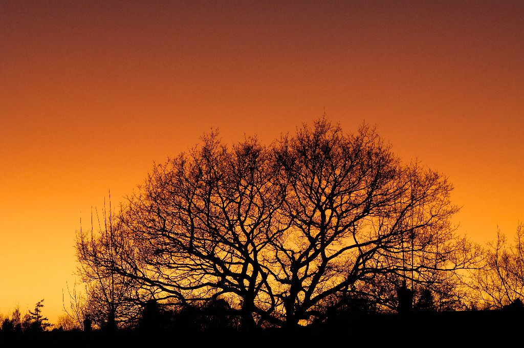 Sunset, Polar stratospheric clouds