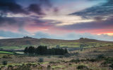 Emsworthy Dartmoor 4