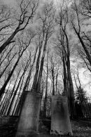 Gravestones in IR