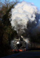 Steam at the halt