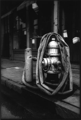 Wrapped Hydrant 2004