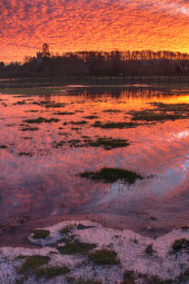 River Kennet flooded
