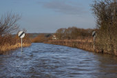Flooded road, Muchelney