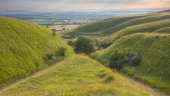 Coombes, Roundway Down