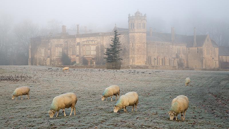 Lacock Abbey in mist