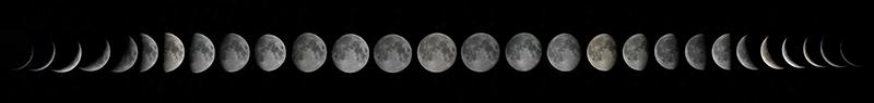 A Lunar Month