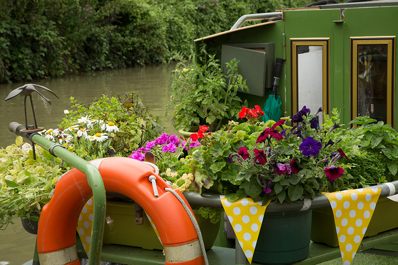 Floating garden, Bradford-on-Avon