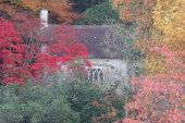 Gothic Cottage in Autumn