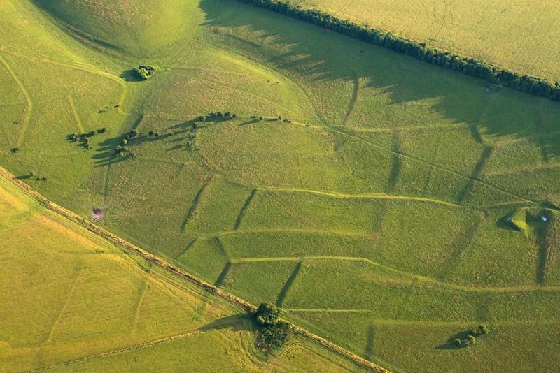 Prehistoric Fields, Pertwood Down