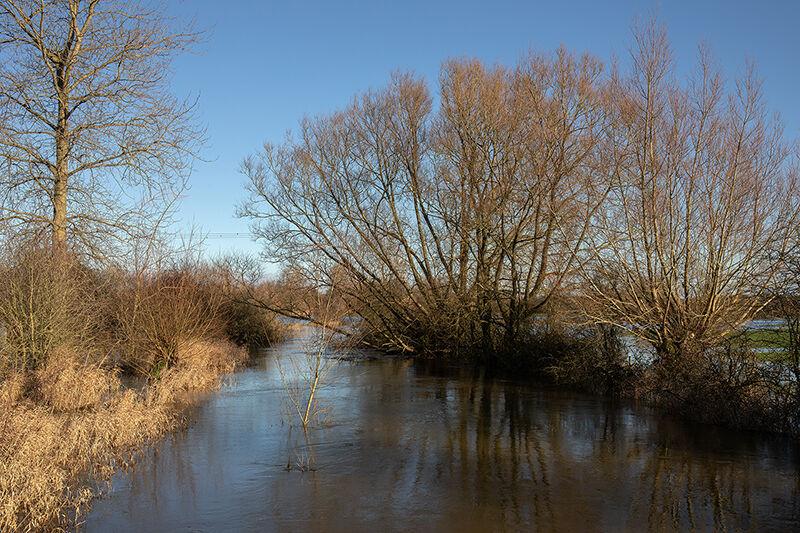 Thames in Flood