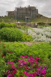 Scaffolding on Lindisfarne Castle