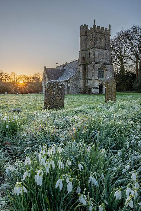 Snowdrops at sunrise