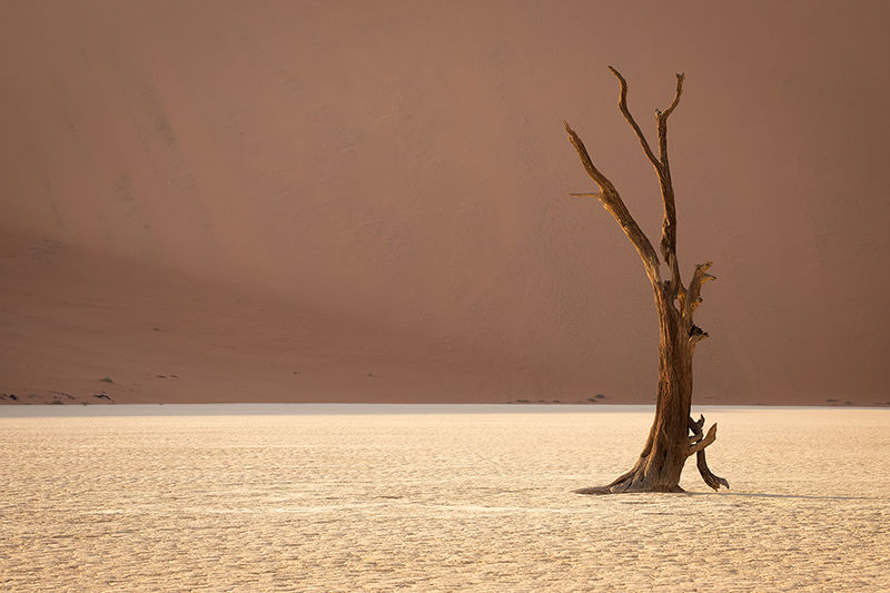 First Light in Deadvlei