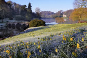 Frosty morning at Stourhead